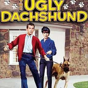 The Ugly Dachshund is listed (or ranked) 25 on the list The Best Kids Movies of the 1960s