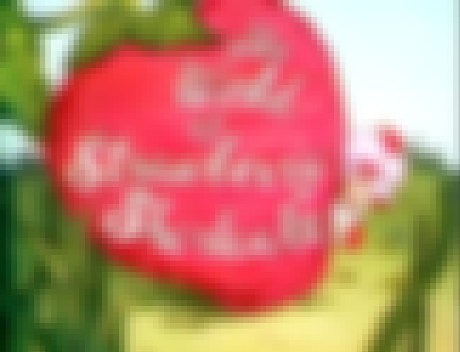 The World of Strawberry Shortc... is listed (or ranked) 4 on the list American Greetings Shows and TV Series