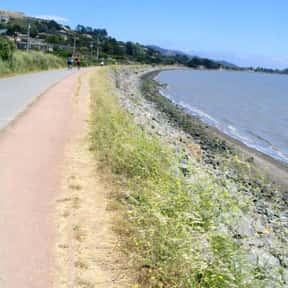 Tiburon is listed (or ranked) 17 on the list The Best Day Trips from San Francisco