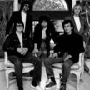 Traveling Wilburys is listed (or ranked) 25 on the list Grammy Award for Best Rock Performance by a Duo or Group with Vocal Winners List