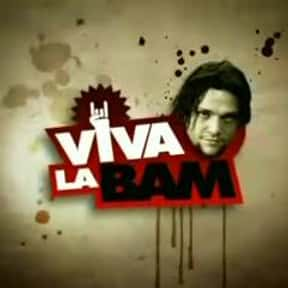 Viva La Bam is listed (or ranked) 5 on the list The Best MTV TV Shows