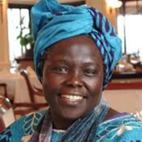 Wangari Maathai is listed (or ranked) 14 on the list Famous University Of Pittsburgh Alumni