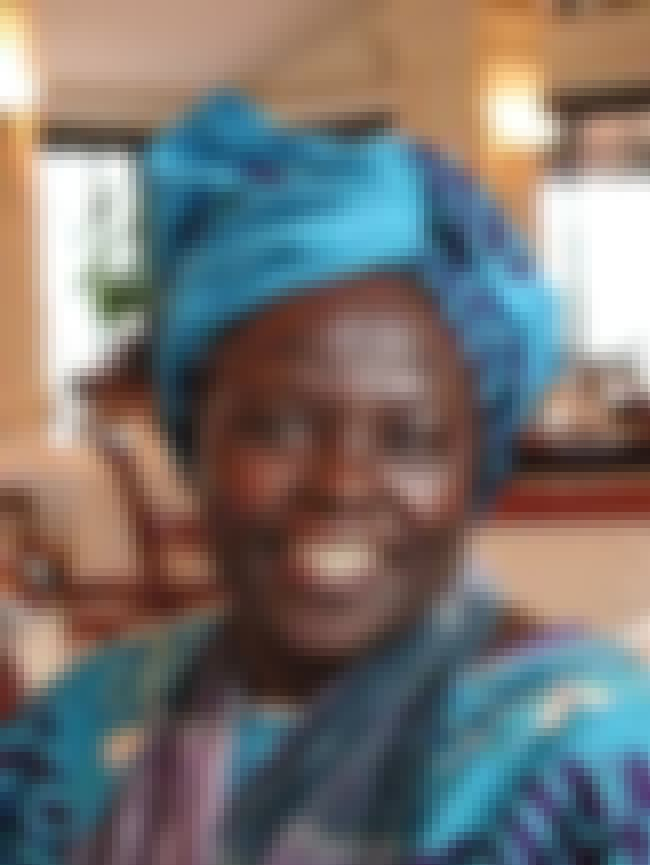 Wangari Maathai is listed (or ranked) 4 on the list Famous People who Majored in Biology