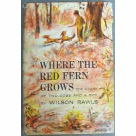 an analysis of the changes in billy colmans traits in where the red fern grows by wilson rawls It stirs up memories of his childhood, his two red hounds, love, devotion, and death he leaves his gate open in case the hound returns, then builds a fire inside he examines two beautiful cups, one large and one small, and thinks about his childhood where the red fern grows chapter 1 summary •we begin on a beautiful spring day.