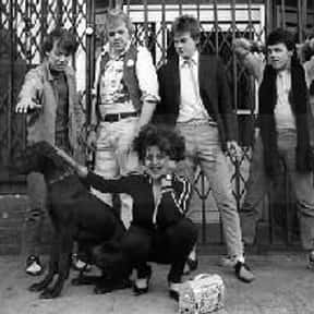 X-Ray Spex is listed (or ranked) 25 on the list Punk Bands with the Best Lyrics