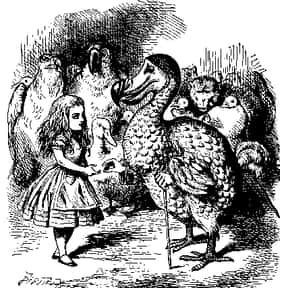 Dodo is listed (or ranked) 14 on the list List of Alice In Wonderland Characters