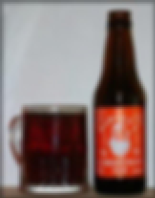 Harvey's Christmas Ale is listed (or ranked) 2 on the list Beers with 8.1 Percent Alcohol Content