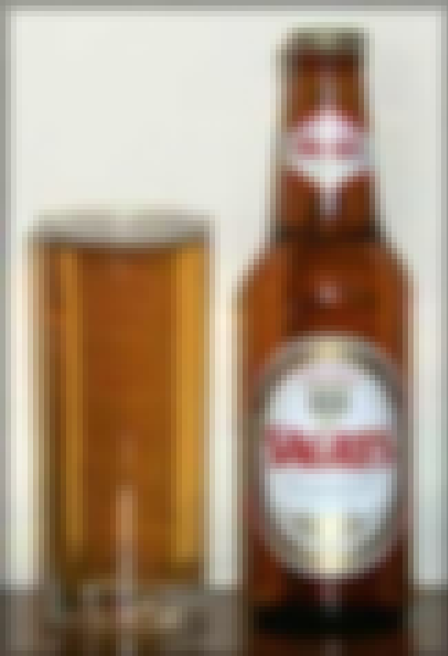 Central de Cervejas Sagres is listed (or ranked) 2 on the list The Top Beers from Portugal