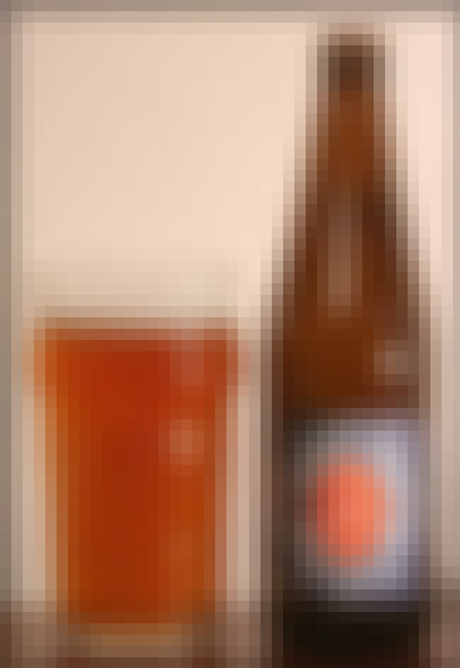 Harvey's India Pale Ale is listed (or ranked) 4 on the list Beers with 3.2 Percent Alcohol Content