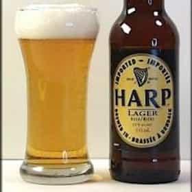 Guinness Harp Lager