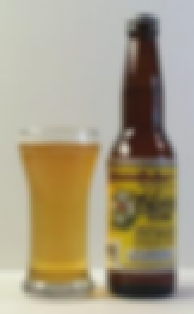 Cerveceria Modelo Pacifico Cla... is listed (or ranked) 5 on the list What Does Your Beer Say About You?