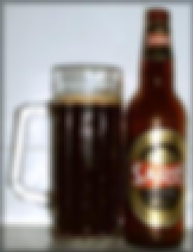 Saris Tmave Pivo is listed (or ranked) 3 on the list The Top Beers from Slovakia