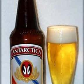 Antarctica Cerveja is listed (or ranked) 5 on the list Beers with 6.0 Percent Alcohol Content