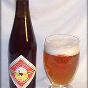 Brouwerij 't IJ Zatte is listed (or ranked) 23 on the list The Top Beers from Netherlands