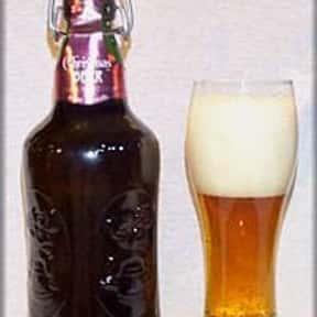 Fischer Bière de Noël