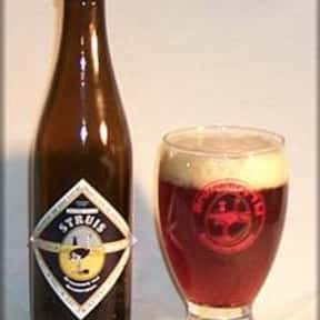 Brouwerij 't IJ Struis is listed (or ranked) 20 on the list The Top Beers from Netherlands