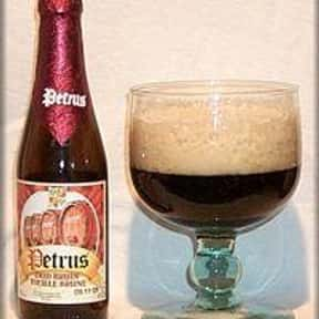 Bavik-De Brabandere Petrus Oud is listed (or ranked) 21 on the list The Top Beers from Belgium