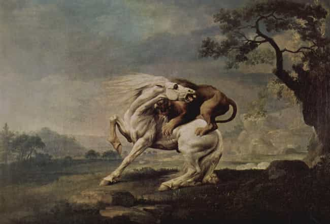 A Lion Attacking a Horse... is listed (or ranked) 2 on the list Famous George Stubbs Paintings