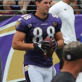 Dennis Pitta is listed (or ranked) 2 on the list The Best Baltimore Ravens Tight Ends Of All Time