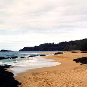 Kauapea Beach is listed (or ranked) 18 on the list The Best Beaches in Hawaii