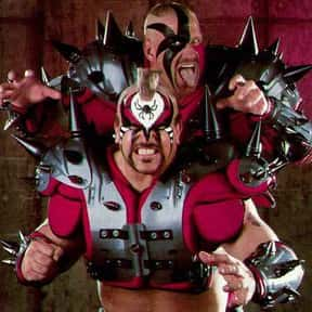 The Road Warriors is listed (or ranked) 5 on the list The Best WCW Wrestlers of All Time