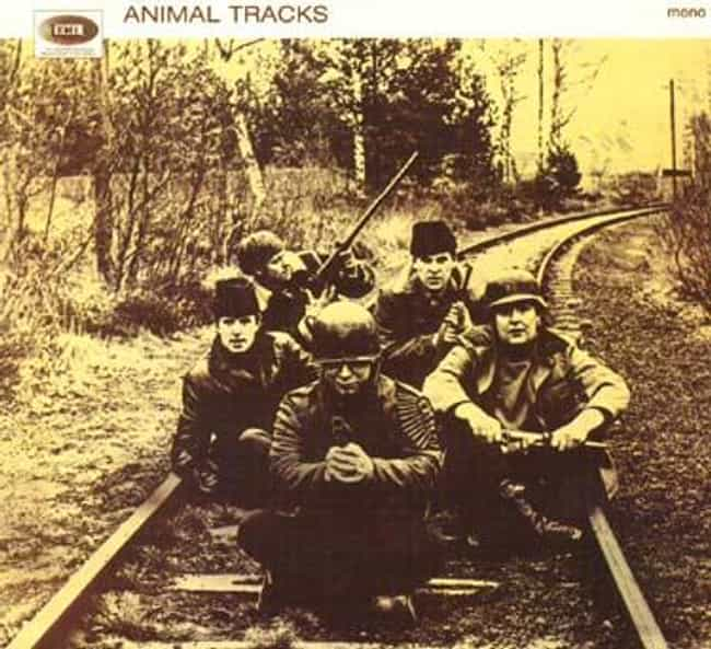 Animal Tracks is listed (or ranked) 3 on the list The Best Animals Albums of All Time