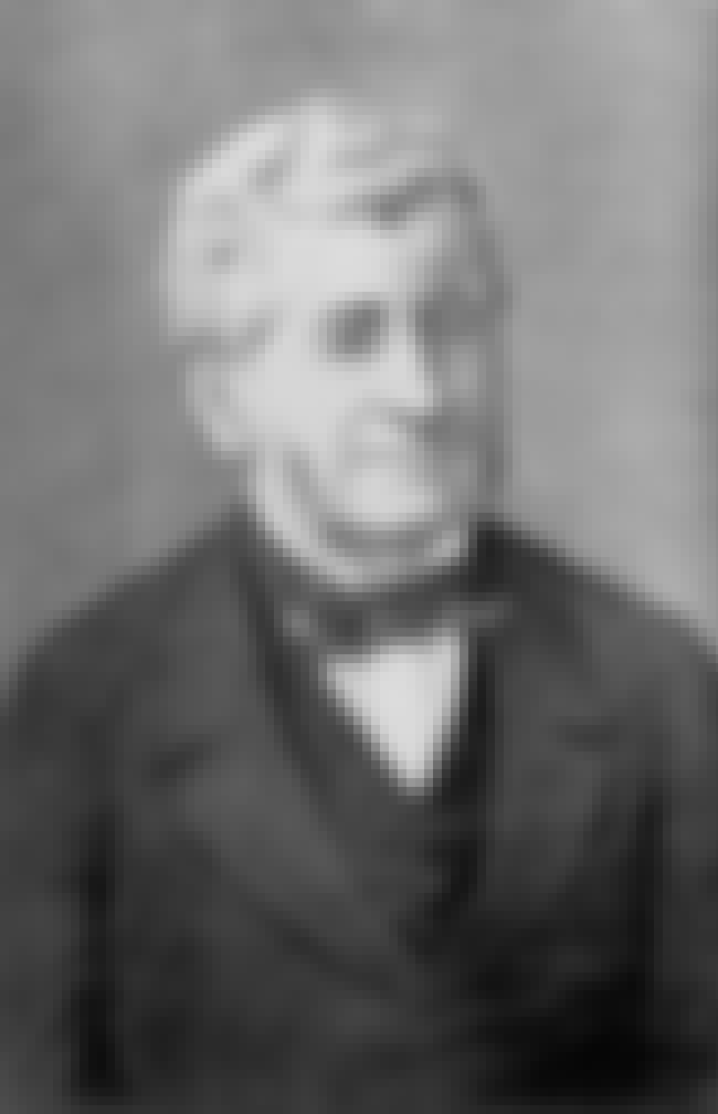 Adolphe-Théodore Brongniart is listed (or ranked) 2 on the list Famous Botanists from France