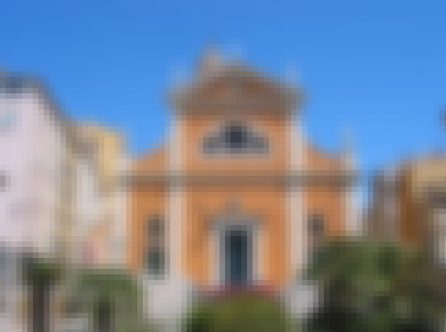 Ajaccio Cathedral is listed (or ranked) 1 on the list List of Giacomo della Porta Architecture