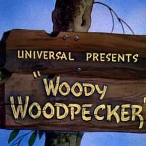 Woody Woodpecker is listed (or ranked) 9 on the list The Best Movies With A Bird Name In The Title