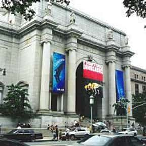American Museum of Natural His is listed (or ranked) 7 on the list The Top Must-See Attractions in New York