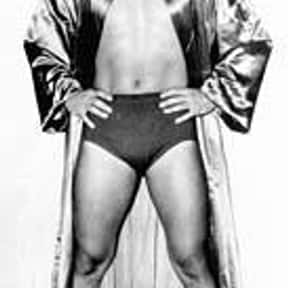 Angelo Poffo is listed (or ranked) 7 on the list Famous People Named Angelo