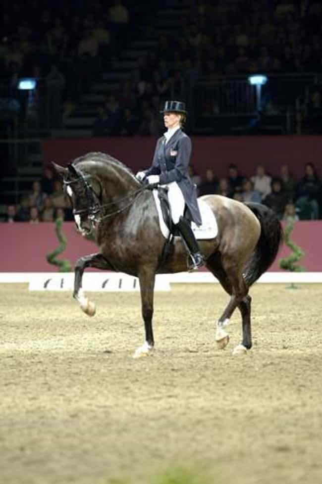 Anky van Grunsven is listed (or ranked) 2 on the list Famous Equestrians from the Netherlands