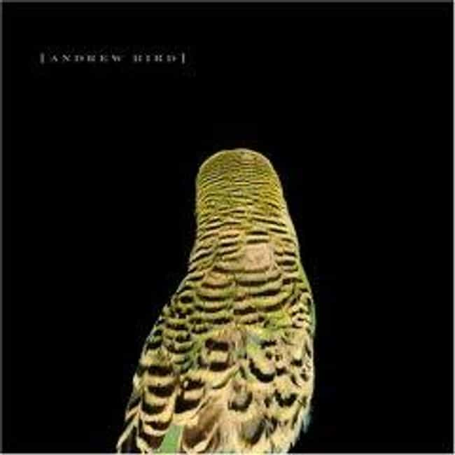 Armchair Apocrypha is listed (or ranked) 1 on the list The Best Andrew Bird Albums of All Time