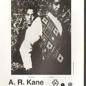 A.R. Kane is listed (or ranked) 2 on the list Rough Trade Records Complete Artist Roster