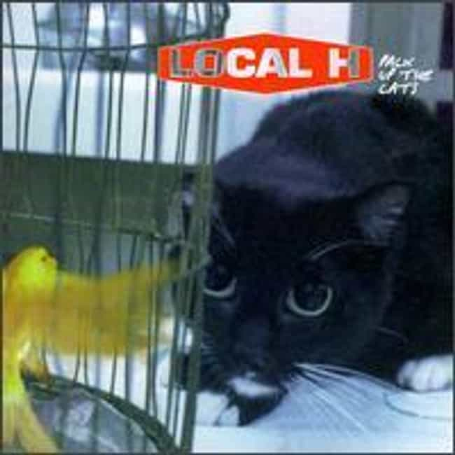 Pack Up the Cats is listed (or ranked) 1 on the list The Best Local H Albums of All Time