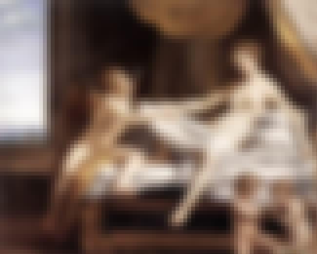 Danaë is listed (or ranked) 4 on the list List of Famous Antonio Da Correggio Artwork