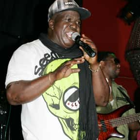 Barrington Levy is listed (or ranked) 12 on the list The Best Reggae Bands/Artists