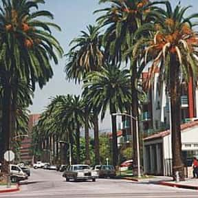 Beverly Hills is listed (or ranked) 15 on the list The Top Must-See Attractions in Los Angeles