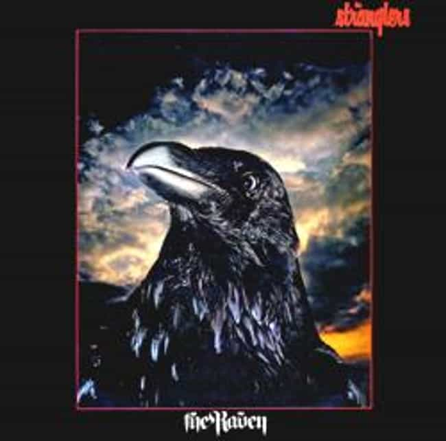 The Raven is listed (or ranked) 3 on the list The Best Stranglers Albums of All Time