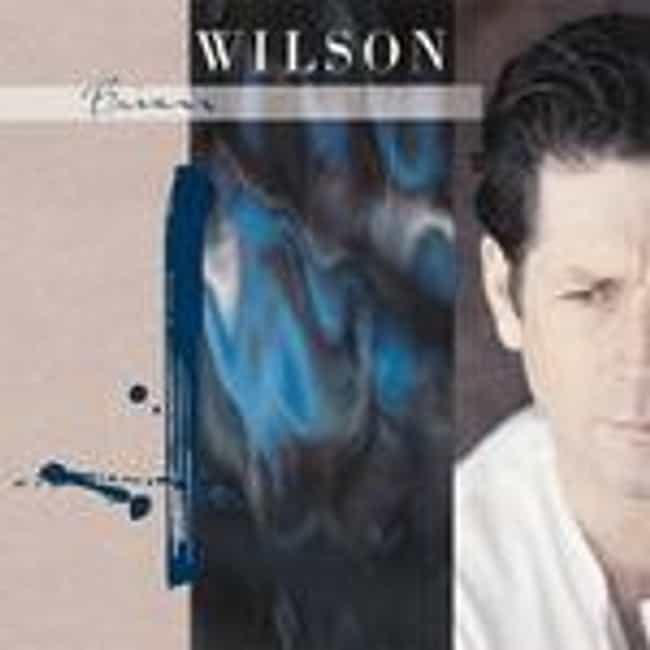 Brian Wilson is listed (or ranked) 2 on the list The Best Brian Wilson Albums of All Time