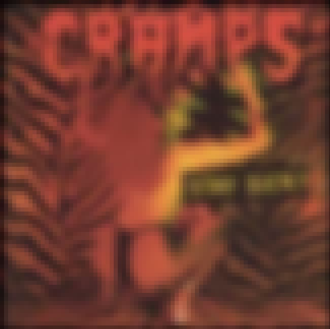 Stay Sick! is listed (or ranked) 4 on the list The Best Cramps Albums of All Time