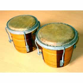 Bongo drum