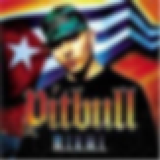 M.I.A.M.I is listed (or ranked) 4 on the list The Best Pitbull Albums of All Time