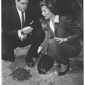 Perry Mason is listed (or ranked) 20 on the list The Best Mystery TV Shows