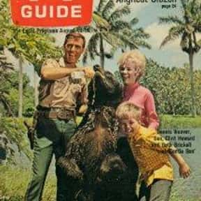 Gentle Ben is listed (or ranked) 16 on the list The Best Live-Action TV Shows Starring Animals