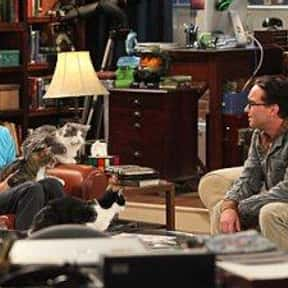 The Zazzy Substitution is listed (or ranked) 21 on the list The Best Big Bang Theory Episodes of All Time