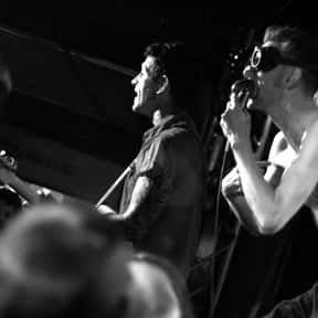 Th' Legendary Shack*Shakers is listed (or ranked) 16 on the list The Best Gypsy Punk Bands