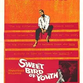 Sweet Bird of Youth is listed (or ranked) 22 on the list The Best Rip Torn Movies of All Time, Ranked