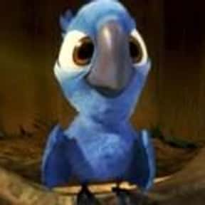 Blu is listed (or ranked) 22 on the list The Best Bird Characters In Cartoons And Comics