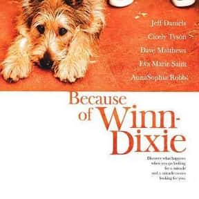 Because of Winn-Dixie is listed (or ranked) 14 on the list What's the Best Florida Movie of All Time?